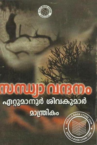back image of Sandhyavandanam